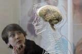 С именем предотвращают старение мозга продукты