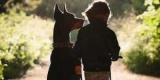 Неприкасаемые: удивительная дружба маленькой девочки и огромной собаки (Фото)